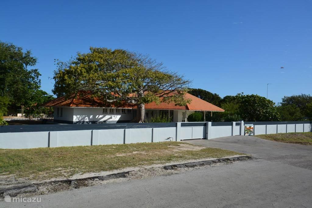 Tropenvilla 'Bosweg 20' ligt in een rustige straat in de wijk Julianadorp in het hart van Curaçao!