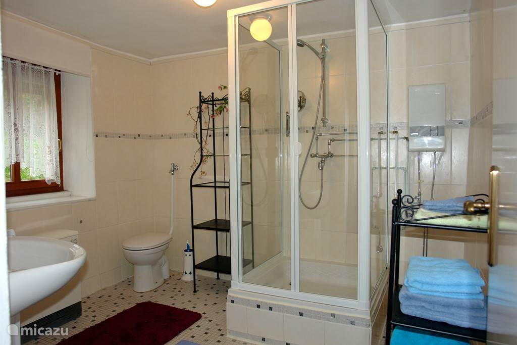 In the spacious bathroom are a shower, sink, toilet and washing machine.