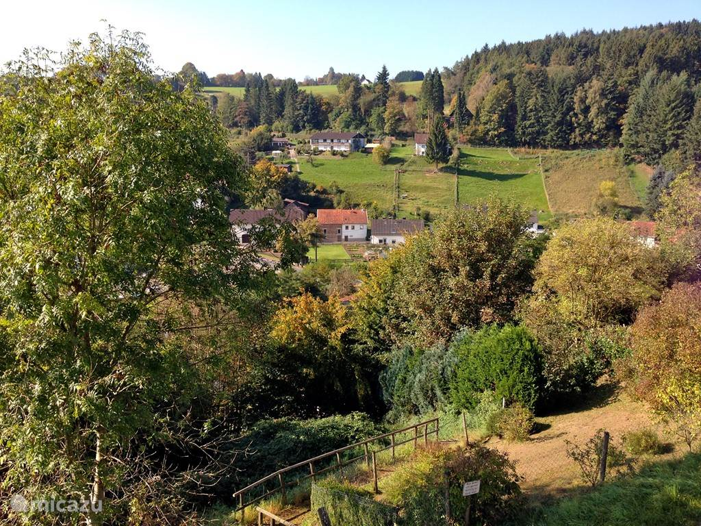 The village Eisenschmitt is a recognized spa. The house in the middle of the picture with the orange roof is your holiday. When the row of trees right in the picture starts kilometers large forest Salmwald where you can walk for hours or mountain biking