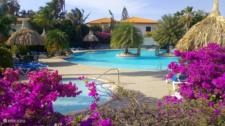 Vacation rental Curaçao, Banda Ariba (East), Seru Coral Apartment Dushi Violet Seru Coral Resort