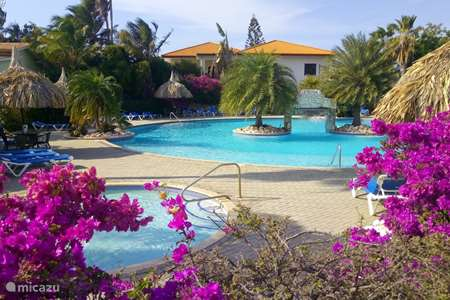Vacation rental Curaçao, Banda Ariba (East), Seru Coral apartment Dushi Violet Seru Coral Resort