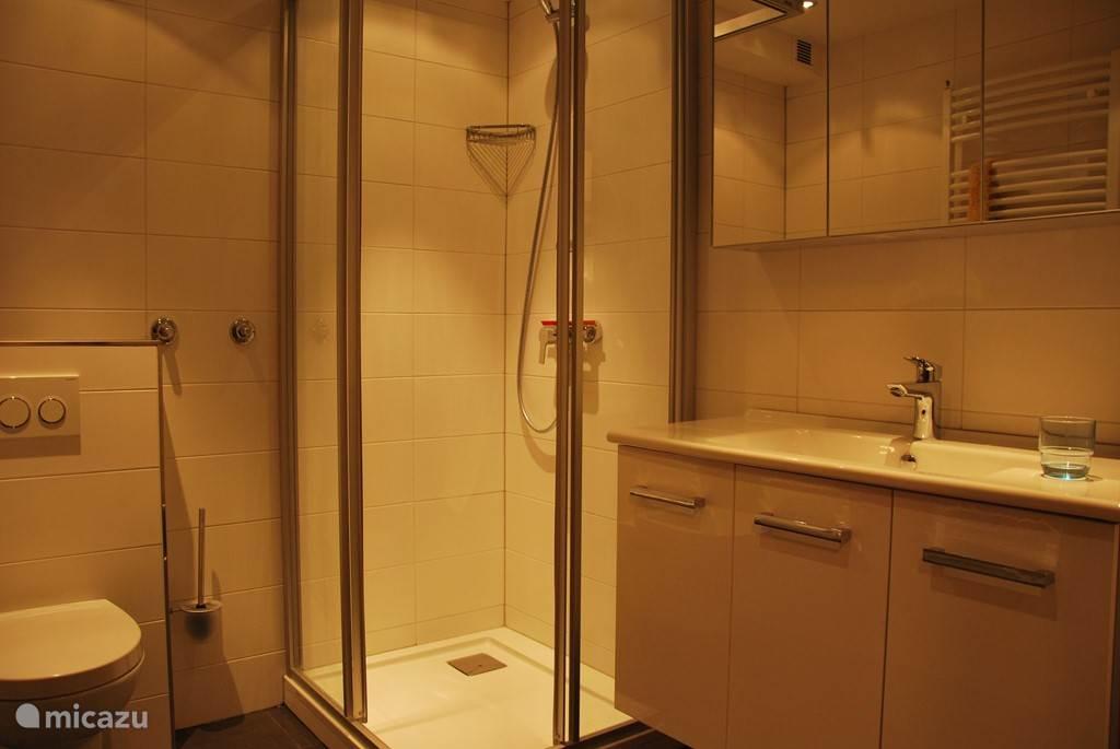 Badkamer met douche, toilet, designradiator en ruime wastafel.