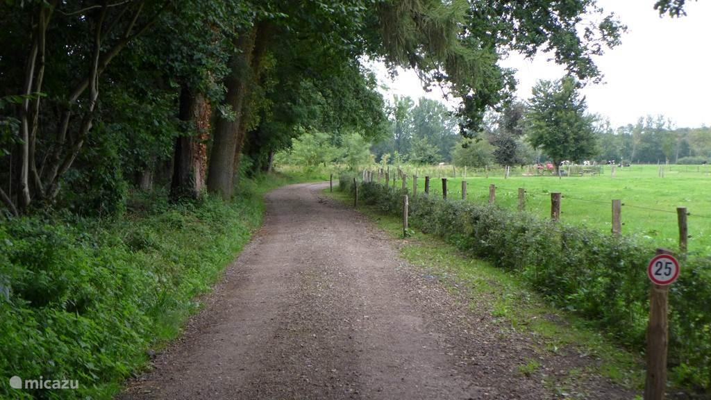 Onze toegangsweg