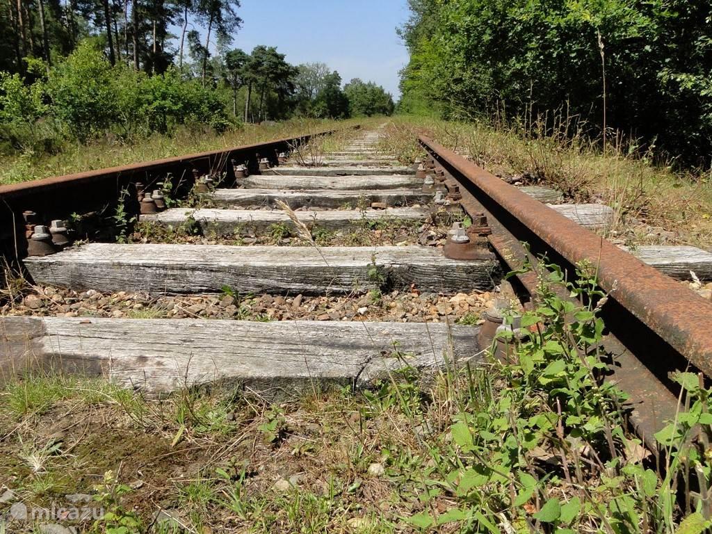 Op 200 m afstand van de boerderij is de verlaten spoorweg de Borkense Bahn te vinden. Vroeger verbinding tussen NL en DU