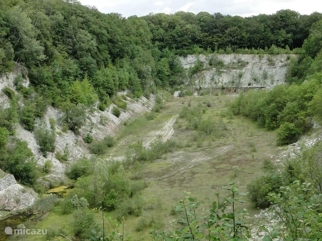 De steengroeve van Winterswijk. Een bijzondere plek, en de broedende oehoe maakt hem nog bijzonderder