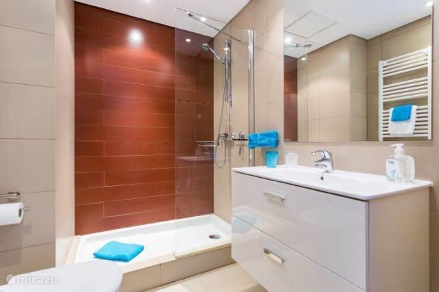 De badkamer behorende bij de gastenslaapkamer