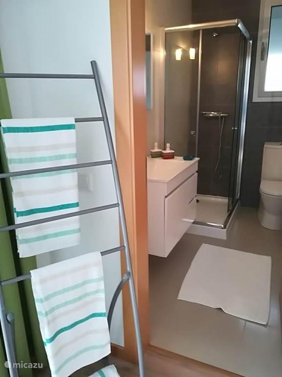 Badkamer ensuite met douche