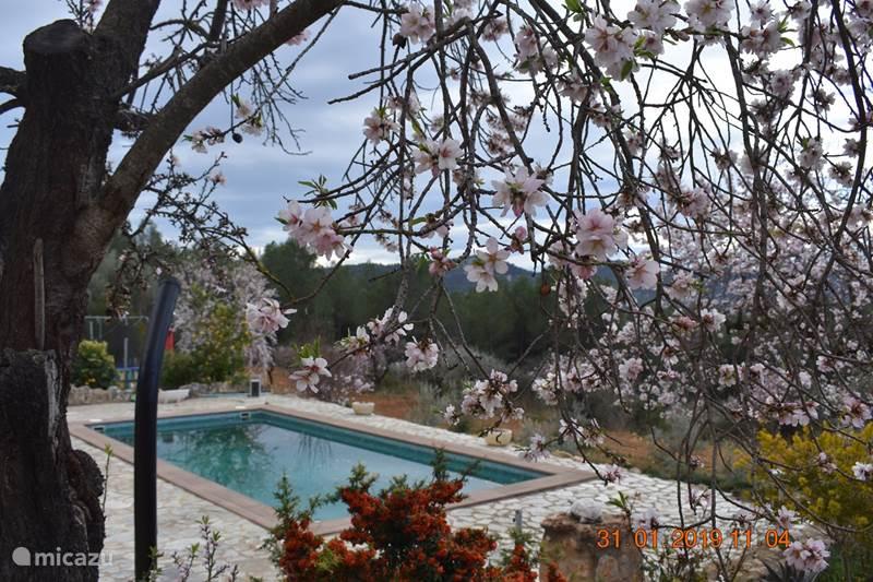 Vakantiehuis Spanje, Valencia, Atzeneta del Maestrat Bed & Breakfast Masia Atalaya - Monlleo