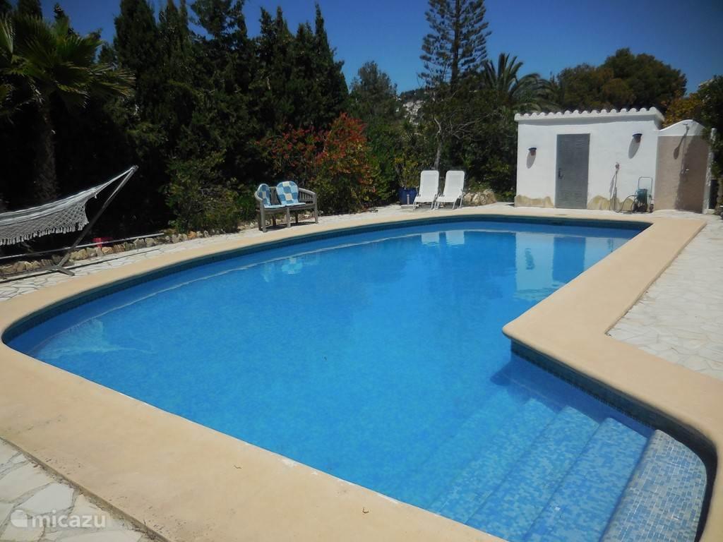 Een groot zwembad van 10 x 5 meter, helemaal in privacy.