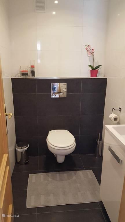 apart toilet met lavabo