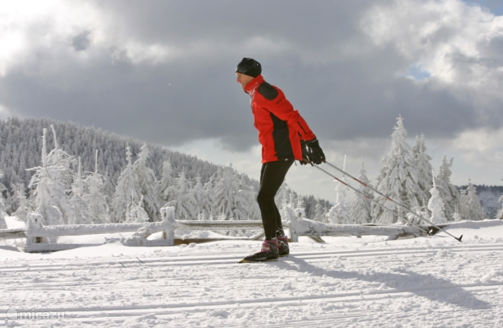 Cross-country skiing or skiing in the beautiful surroundings