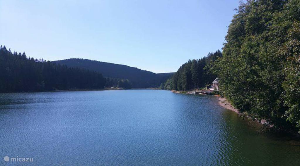 Swim to sunbathe at Lütschetalsperre (including the dogs)