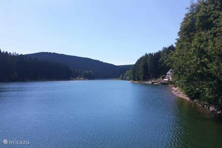 Lekker zwemmen en/of zonnen bij Lütschetalsperre (ook voor de honden)