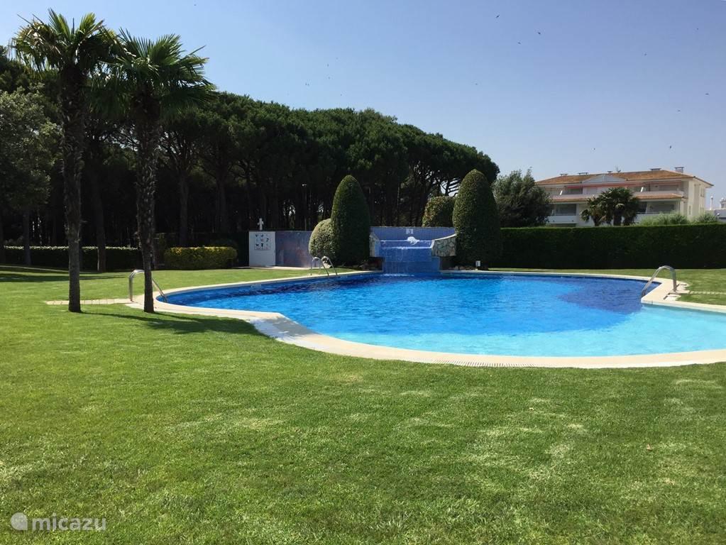 Het zwembad met waterval
