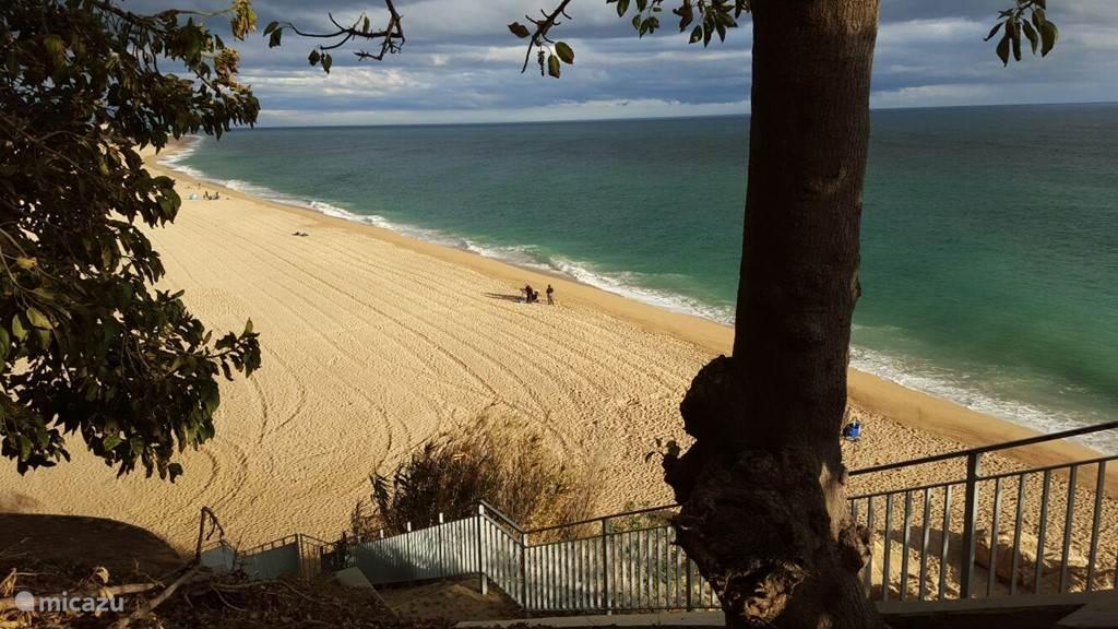 Uitzicht op het strand