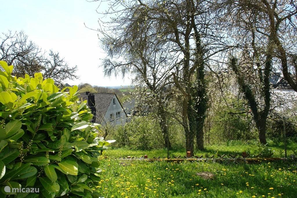 Zonnige tuin met terras