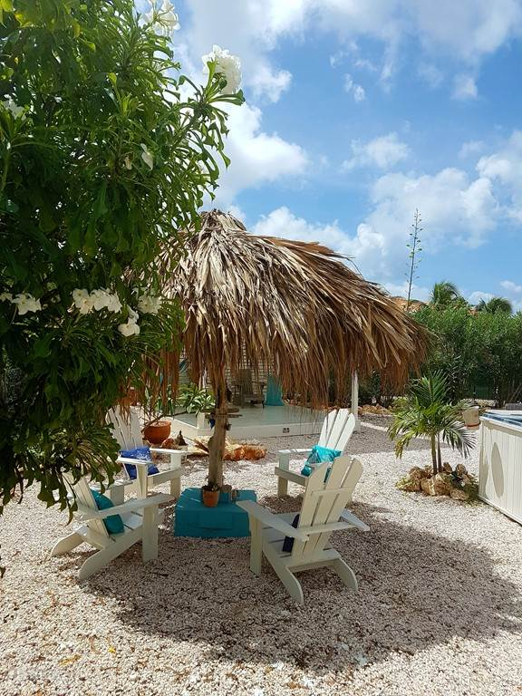 4 beach chairs under the palapa (Colombian parasol)
