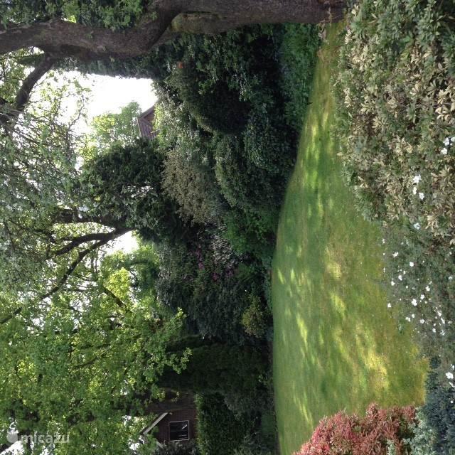 Jullie zon/schaduwrijke prachtige tuin met veel privacy.