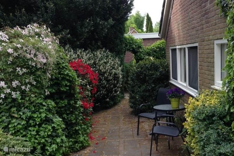 Vakantiehuis Nederland, Drenthe, Meppen Vakantiehuis Bosrand