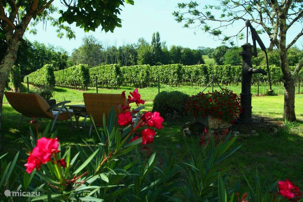 Garden overlooking the vineyards