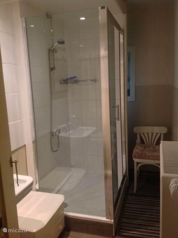 De tweede badkamer met douche en wasbak