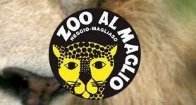 Zoo - Dierentuin