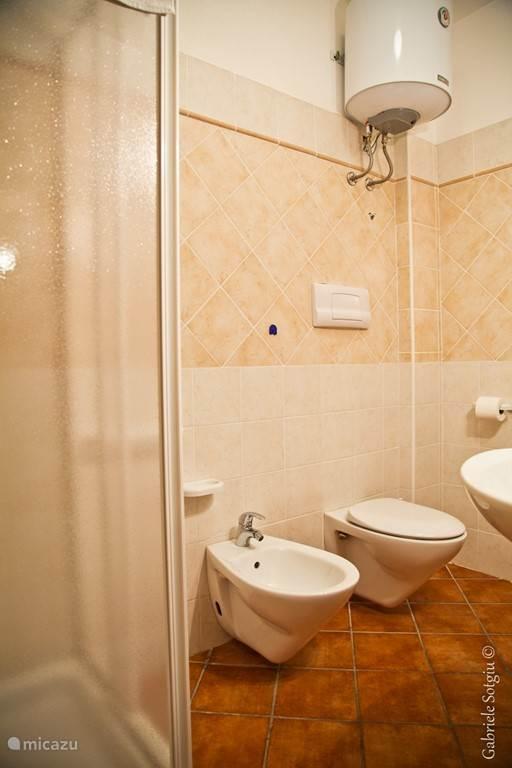 Badkamer met wastafel, spiegel, douchecabine, toilet en bidet.