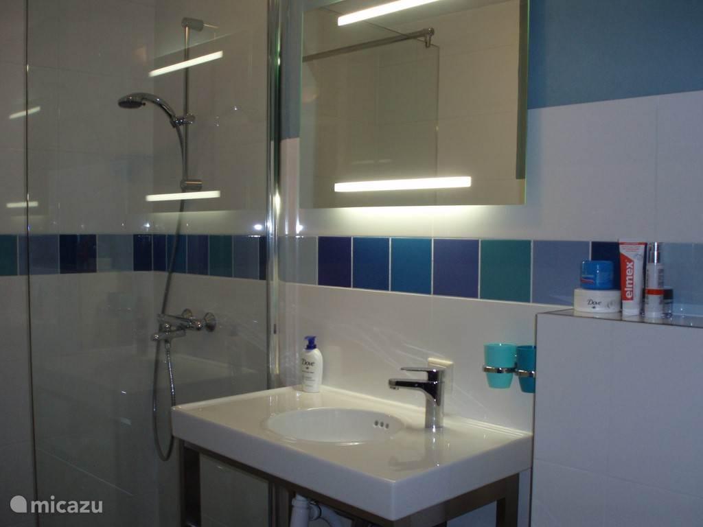 badkamer met inloopdouche, wasmeubel en toilet