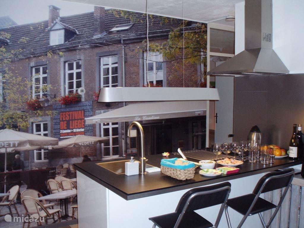 moderne keuken incl vaatwasser etc en fotbehang (terras in Luik)
