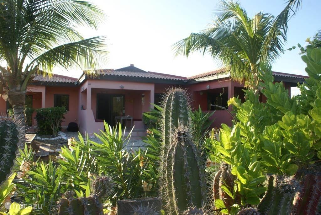 Ferienwohnung Bonaire, Bonaire, Lac Bay appartement Mangrove Surf Apartment auf Bonaire