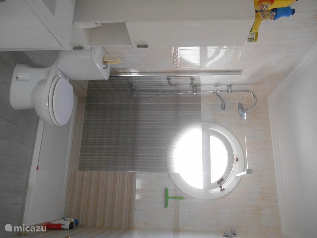 moderne badkamer met instapdouche