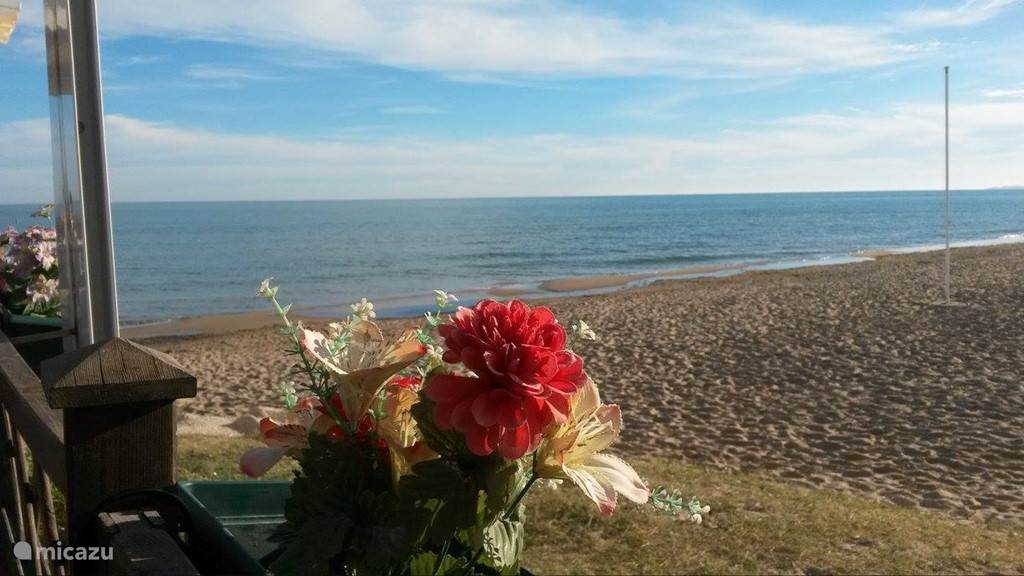 La Marina el Pinet - strand / zee