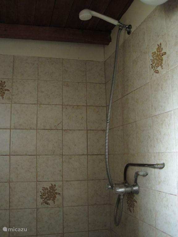 De douche en wc zijn beide in de badkamer.