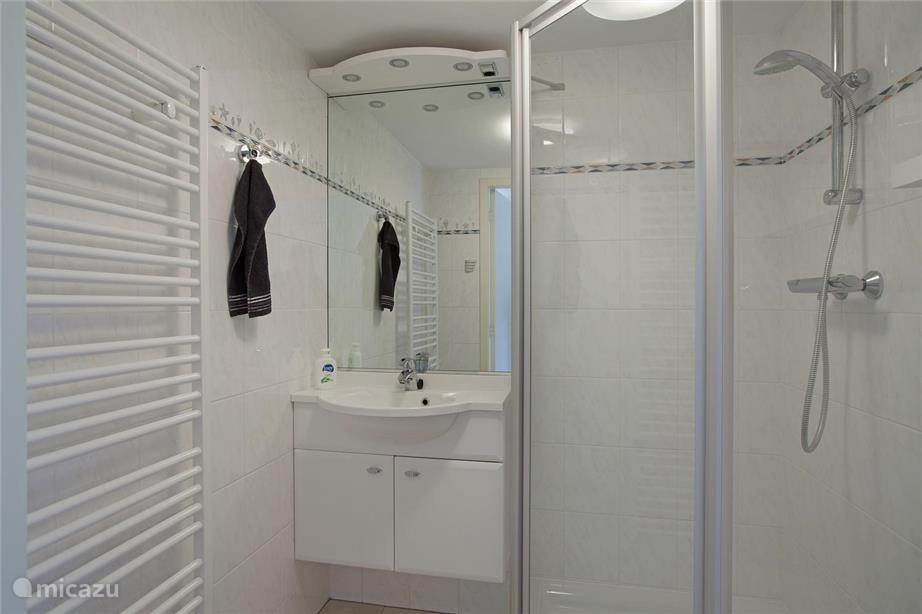 badkamer met wc en designradiator