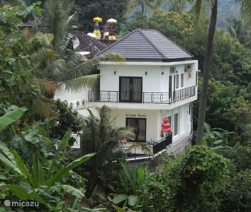 Vacation rental Indonesia, Bali, Mayong villa Villa Riang
