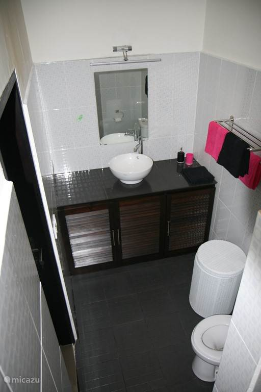 Modern bathroom with sink, shower and toilet.