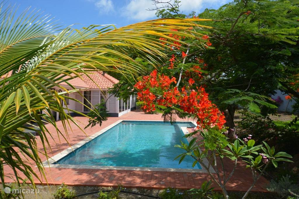 Vacation rental Curacao, Curacao-Middle, Julianadorp - villa Dream Villa in Julianadorp
