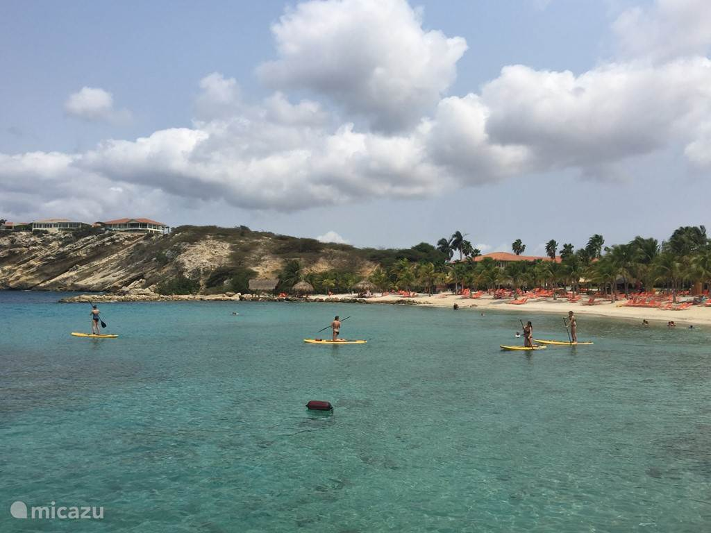 Stand up paddle boards for rent at Blue Bay Beach