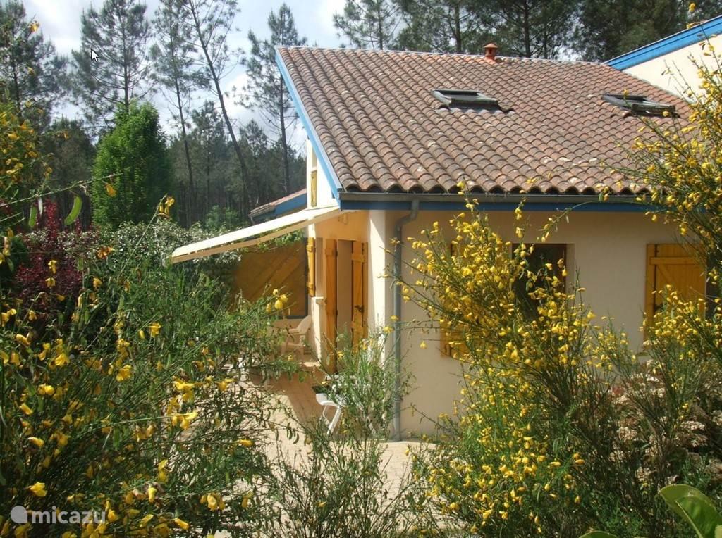 Vakantiehuis Frankrijk, Aquitaine, Saint-Julien-en-Born Bungalow Vakantiepark Village Océlandes