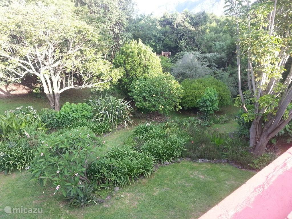 Een weelderige tuin