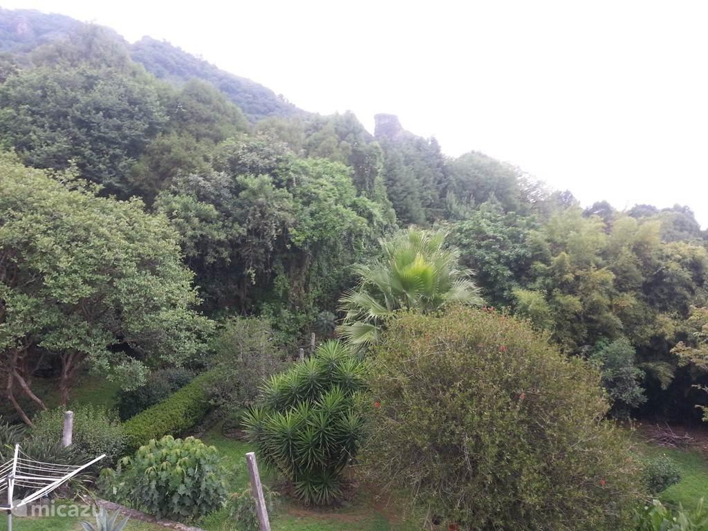 Deel van tuin met zicht op berg
