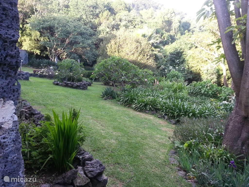 Dezelfde tuin vanuit een andere hoek bekeken