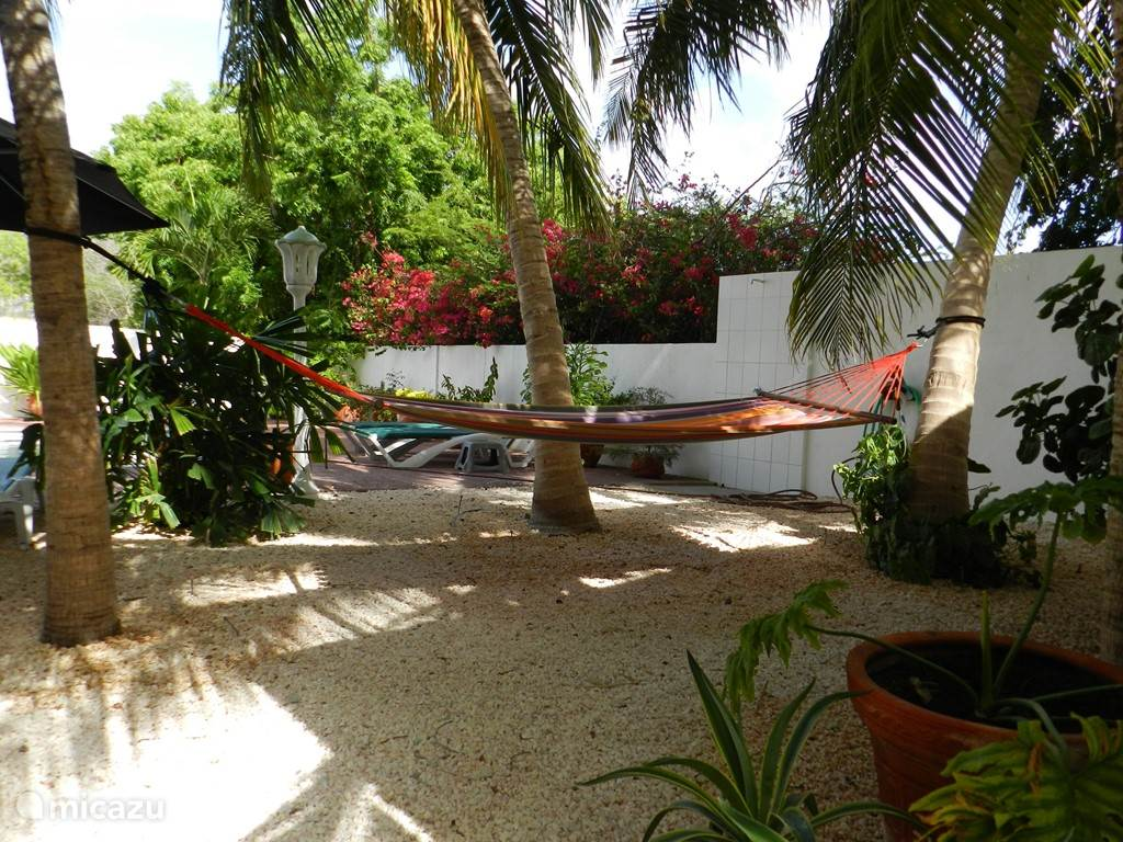 Hangmat onder de palmen