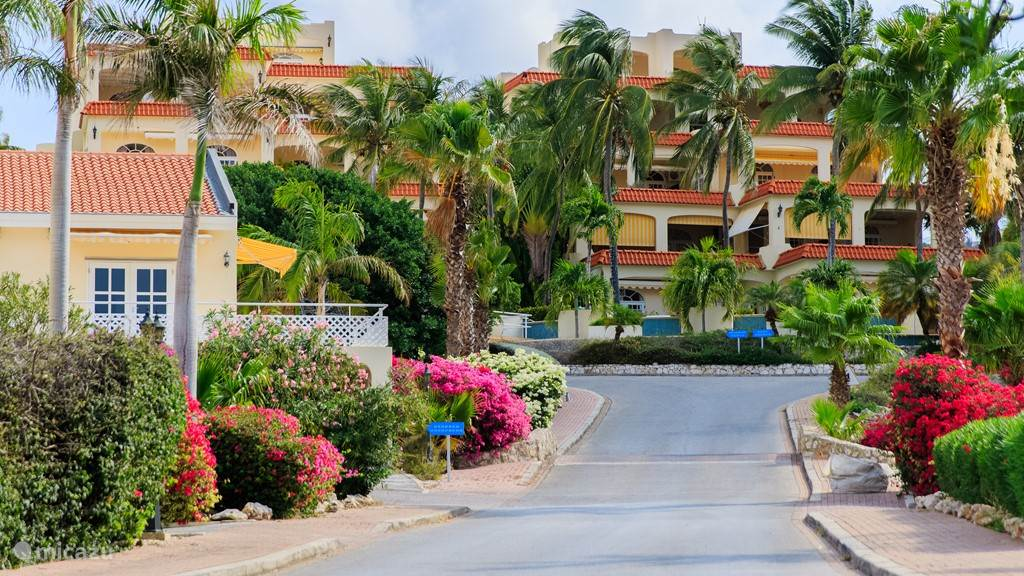 Vakantiehuis Curacao, Curacao-Midden, Piscadera Appartement Holiday Apartments Royal Palm 1