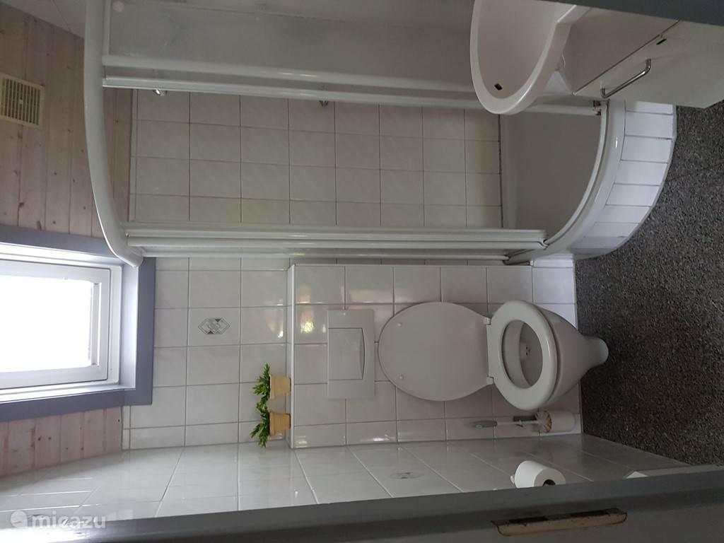 De douche met toilet op de begane grond.