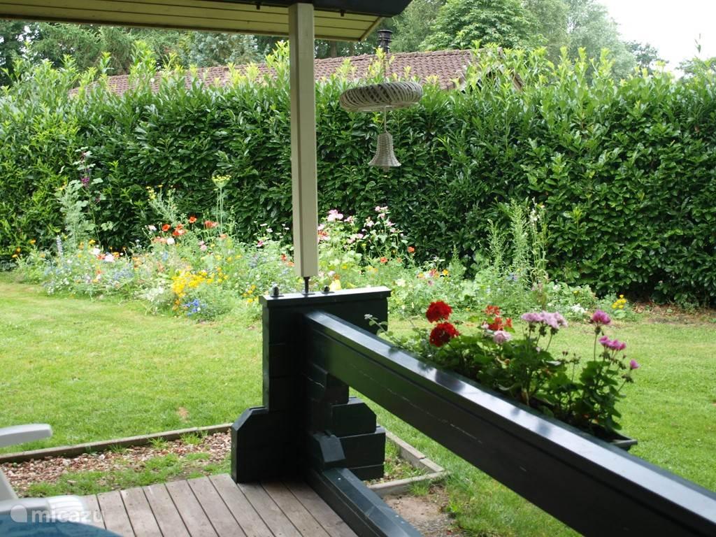 Uitzicht op de tuin vanaf de veranda