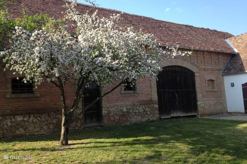 Vacation rental Hungary, Baranya, Magyarszék Farmhouse The farm Appelhof