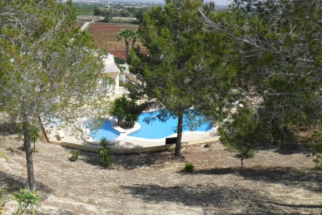 Gemeenschappelijk zwembad van boven af gezien