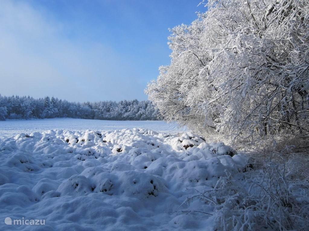 Sneeuwlandschap rondom Wielen.