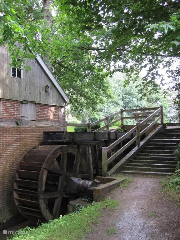 In een schilderachtige omgeving van Wilsum ligt de watermolen aan de molenvijver. De watermolen werd waarschijnlijk al in de 13de eeuw gebouwd, in het jaar 1940 stilgelegd en in 1996 gerestaureerd. De molen ligt aan een idyllische vijver.